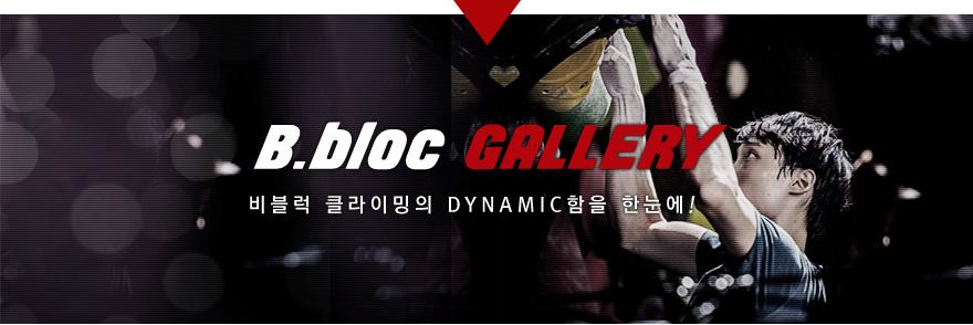 B.bloc GALLERY 비블럭 어반 클라이밍의 DYNAMIC함을 한눈에!